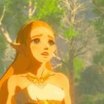 SWITCH The Legend of Zelda: Breath of the Wild3154931549